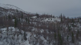 AK0001_1483 - 4K stock footage aerial video flying over wooded, snowy slopes of Chugach Mountains, Alaska