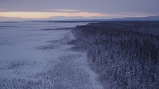 AK0001_1696 - 4K stock footage aerial video flying over frozen, snowy ground, two moose at twilight, Point MacKenzie, Alaska