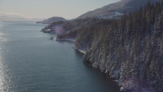 AK0001_1839 - 4K stock footage aerial video flying along snowy, wooded shore of Port Wells, Alaska