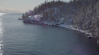 AK0001_1840 - 4K stock footage aerial video flying along snowy, wooded shore of Port Wells, Alaska