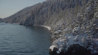 AK0001_1841 - 4K stock footage aerial video flying along wooded, snowy, hilly shore of Port Wells, Alaska