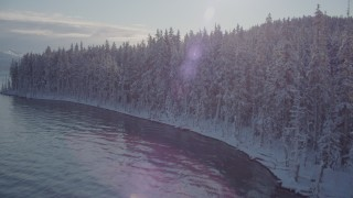 AK0001_1842 - 4K stock footage aerial video flying over snowy, wooded shore, reveal Chugach Mountains, Port Wells, Alaska