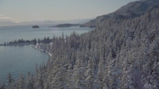AK0001_1844 - 4K stock footage aerial video flying over snow covered wooded hills along shore of Port Wells, Alaska