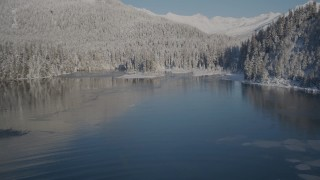 AK0001_1846 - 4K stock footage aerial video flying low over water toward snow covered, wooded shore, Port Wells, Alaska