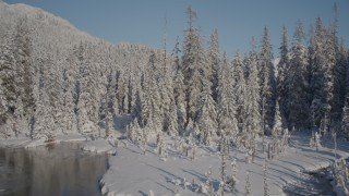 AK0001_1847 - 4K stock footage aerial video ascend snow covered, wooded shore reveal mountain peaks, Port Wells, Alaska