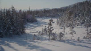 AK0001_1856 - 4K stock footage aerial video ascending a snowy slope revealing clearing and woods, Port Wells, Alaska