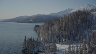 AK0001_1866 - 4K stock footage aerial video flying along snowy, wooded shore of Port Wells, Alaska