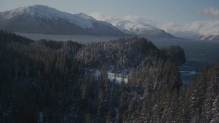 AK0001_1900 - 4K stock footage aerial video flying between snow covered wooded slopes, revealing Passage Canal, Alaska