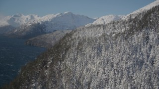 AK0001_1902 - 4K stock footage aerial video flying along snow covered forested slopes along shore of Passage Canal, Alaska