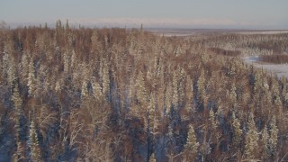 AK0001_2051 - 4K stock footage aerial video flying over snowy wooded hill in Big Lake Area, Alaska