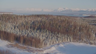 AK0001_2052 - 4K stock footage aerial video flying by snowy wooded hills in Big Lake Area, Alaska