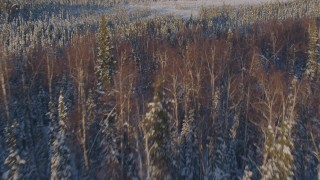 AK0001_2053 - 4K stock footage aerial video flying over frozen shore of a lake and snowy forest in Big Lake Area, Alaska