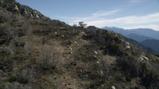 AX0009_030 - 5K stock footage aerial video fly over a tree on a slope and approach rugged slopes in the San Gabriel Mountains, California