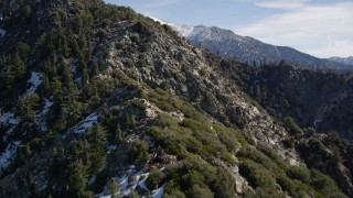 AX0009_050 - 5K stock footage aerial video of flying up a slope with evergreens and snow patches in the San Gabriel Mountains, California