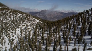 AX0009_121 - 5K stock footage aerial video fly over a ridge covered with winter snow and evergreen trees, San Bernardino Mountains, California