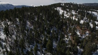 AX0009_134 - 5K stock footage aerial video orbit evergreens and ski runs on a snowy slope at Snow Summit in winter, California