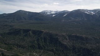 AX0010_049 - 5K stock footage aerial video pan across forest near snowy San Bernardino Mountains in winter, California