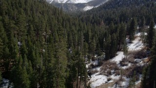 AX0010_056 - 5K stock footage aerial video fly over an evergreen forest with winter snow in the San Bernardino Mountains, California