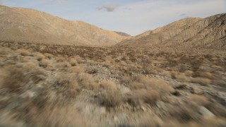AX0011_016 - 5K stock footage aerial video of low altitude fly over of desert plants toward mountains in Joshua Tree National Park, California