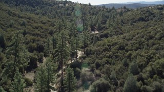 AX0014_014 - 5K stock footage aerial video of a dirt road winding through trees, San Jacinto Mountains, California
