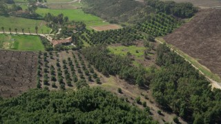 AX0015_034 - 5K stock footage aerial video fly over trees and farmland, Fallbrook, California
