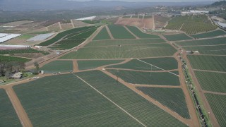 AX0015_037 - 5K stock footage aerial video tilt and fly over fields of crops, Fallbrook, California