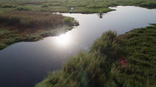 AX0018_057 - 5K stock footage aerial video fly low over St. Johns River and forest near Orlando at sunrise, Florida