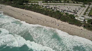 AX0019_039 - 5K stock footage aerial video of sunbathers enjoying a Jupiter beach as waves roll in, Florida