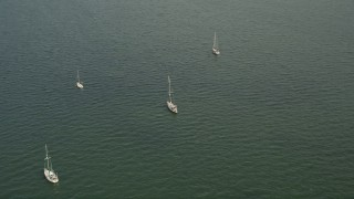 AX0021_152 - 5K stock footage aerial video orbit four sailboats moored in the bay near Coconut Grove, Florida