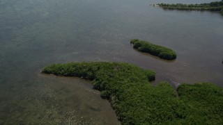 AX0025_015 - 5K stock footage aerial video of flying over Mangrove Preserve on the coast, Homestead, Florida