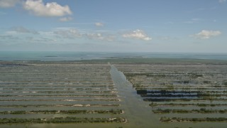 AX0025_028 - 5K stock footage aerial video of Turkey Point Power Plant cooling canal system, Homestead, Florida