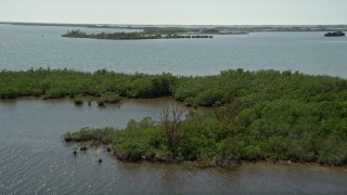 AX0025_034 - 5K aerial stock footage video of flying over coastal mangroves, Model Lands Basin, Homestead, Florida