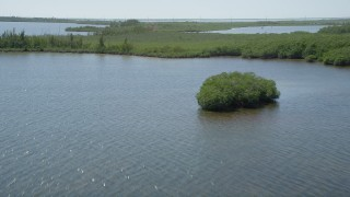 AX0025_041 - 5K stock footage aerial video of flying low over coastal mangroves, Model Lands Basin, Homestead, Florida