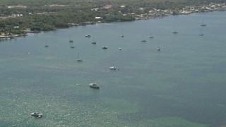 AX0025_063 - 5K aerial stock footage video of flying over sailboats and mangroves on Blackwater Sound, Key Largo, Florida