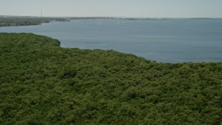 AX0025_065 - 5K stock footage aerial video fly over mangroves, Buttonwood Sound shore, sailboats, Key Largo, Florida