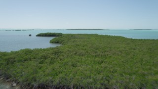 AX0025_074 - 5K stock footage aerial video of flying over mangroves off the shore, Key Largo, Florida