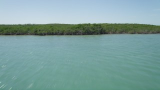 AX0025_076 - 5K stock footage aerial video of flying over water, tilt up to reveal and fly over mangroves, Key Largo, Florida