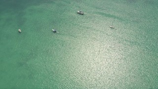 AX0025_113 - 5K stock footage aerial video of a bird's eye view of sailboats and catamarans, Islamorada, Florida
