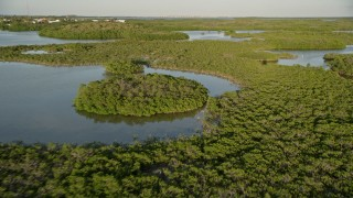 AX0028_011 - 5K stock footage aerial video of flying over islands with mangroves at sunset, Long Key, Florida