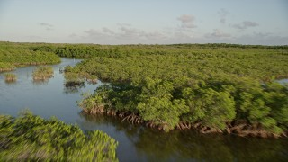 AX0028_012 - 5K stock footage aerial video of flying low over mangroves at sunset in Long Key, Florida