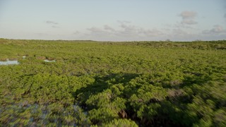 AX0028_013 - 5K stock footage aerial video of flying low over and island with mangroves, Long Key, Florida, sunset