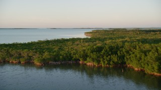 AX0028_025 - 5K stock footage aerial video of flying over mangroves on an island at sunset, Islamorada, Florida