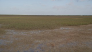 AX0030_006 - 5K stock footage aerial video of flying low over marshland, Florida Everglades, Florida