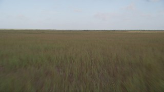 AX0030_007 - 5K stock footage aerial video of flying low over marshland, Florida Everglades, Florida