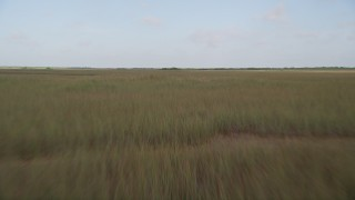 AX0030_008 - 5K stock footage aerial video of flying over marshland, Florida Everglades, Florida