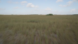 AX0030_026 - 5K stock footage aerial video of racing over marshland, Florida Everglades, Florida