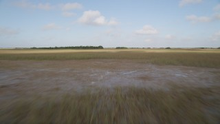 AX0030_027 - 5K stock footage aerial video of marshland, Florida Everglades, Florida