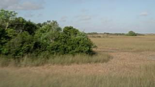 AX0030_030 - 5K stock footage aerial video of panning across marshland, Florida Everglades, Florida
