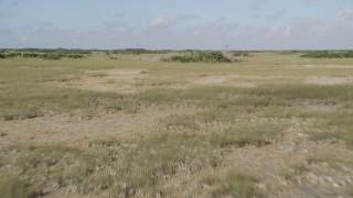 AX0030_040 - 5K stock footage aerial video of flying over marshland, Florida Everglades, Florida