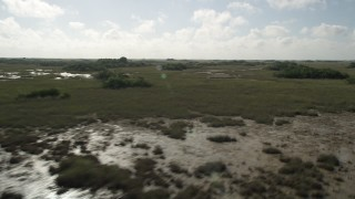 AX0030_047 - 5K stock footage aerial video of passing by marshland, Florida Everglades, Florida